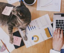 10 Tips for Staying Motivated as a Work-at-Home Freelancer