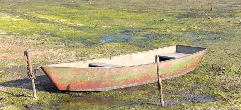 a boat in stagnant water